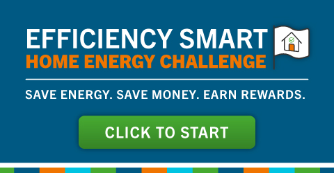 Learn about the home energy challenge